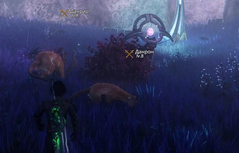 Данрон в Герельзорском лесу Edge of Eternity