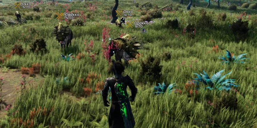 Охота на Орокко - Герельзорские равнины - Edge of Eternity